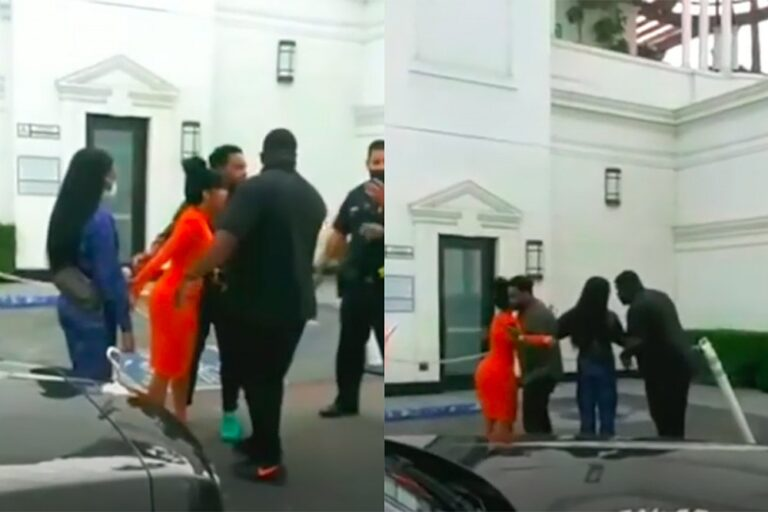 Cardi B Screams as Offset Is Detained By Police: Video
